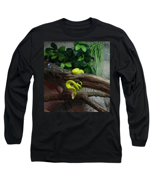 Out Of Africa Tree Snake Long Sleeve T-Shirt