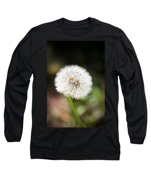 Overlooked  Long Sleeve T-Shirt by Aaron Berg