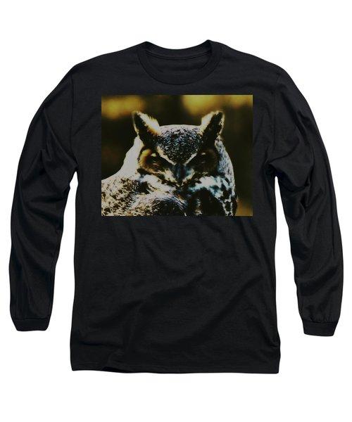 Owl Portrait Long Sleeve T-Shirt