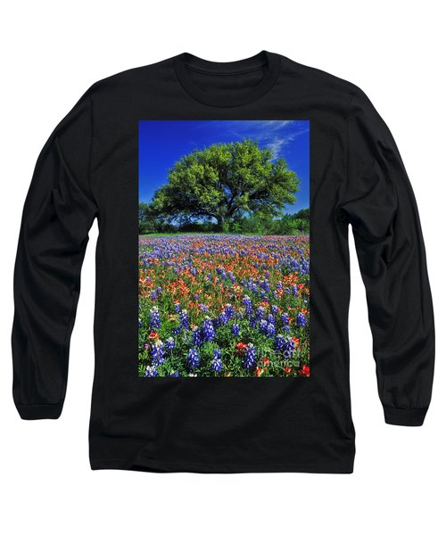 Paintbrush And Bluebonnets - Fs000057 Long Sleeve T-Shirt by Daniel Dempster