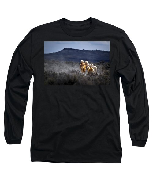Palomino Buttes Band Long Sleeve T-Shirt