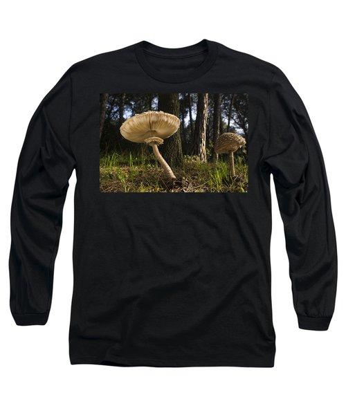Parasol Mushrooms Pair In Forest Spain Long Sleeve T-Shirt
