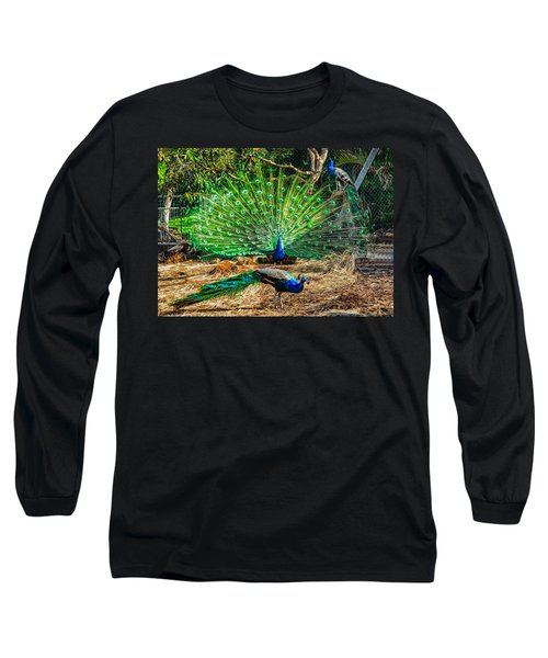 Long Sleeve T-Shirt featuring the painting Peacocking by Omaste Witkowski
