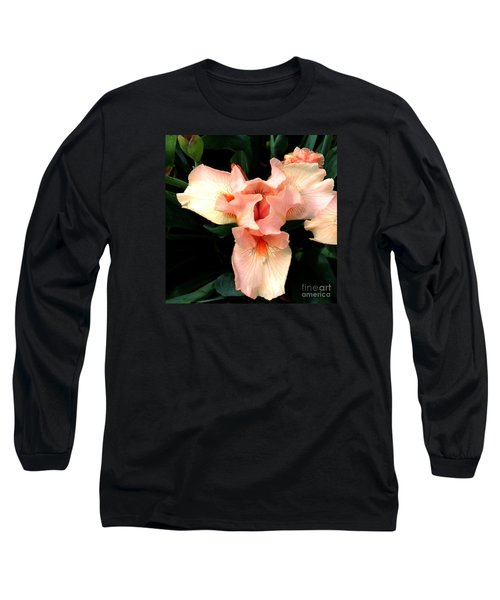Pink Iris Long Sleeve T-Shirt by The Art of Alice Terrill