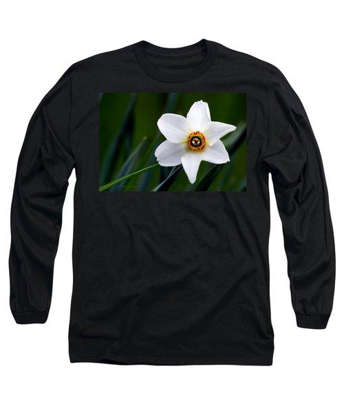 Poet's Daffodil Long Sleeve T-Shirt
