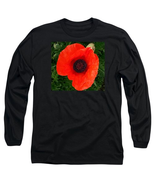 Poppy Of Remembrance  Long Sleeve T-Shirt by Sharon Duguay