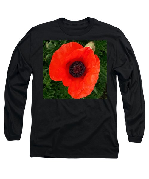 Poppy Of Remembrance  Long Sleeve T-Shirt