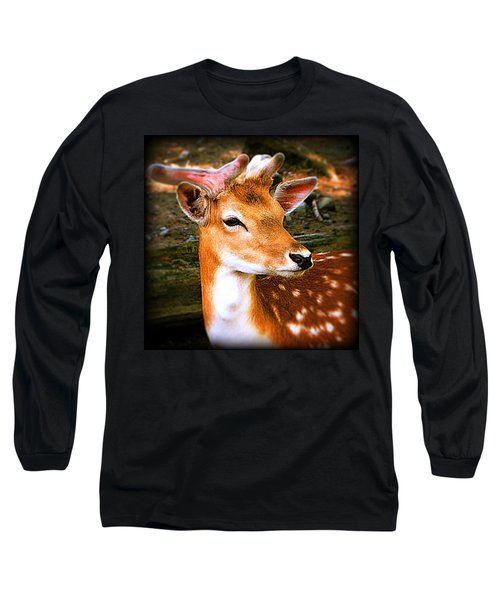 Portrait Male Fallow Deer Long Sleeve T-Shirt