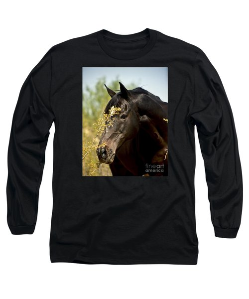 Portrait Of A Thoroughbred Long Sleeve T-Shirt by Kathy McClure