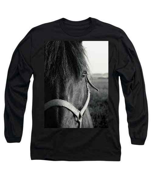 Portrait Of Horse In Black And White Long Sleeve T-Shirt