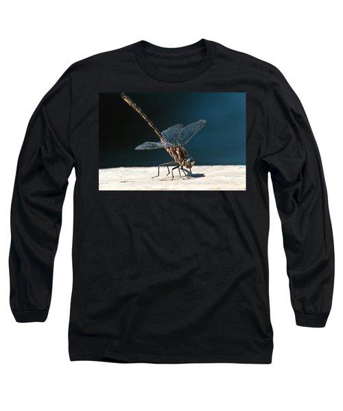Posing Dragonfly Long Sleeve T-Shirt