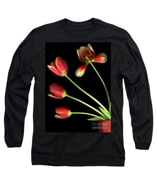 Pot Of Tulips Long Sleeve T-Shirt by Christian Slanec