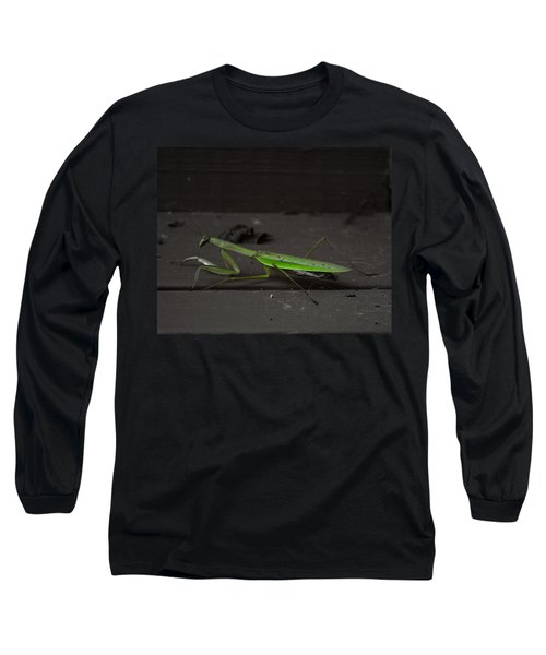 Praying Mantis 2 Long Sleeve T-Shirt