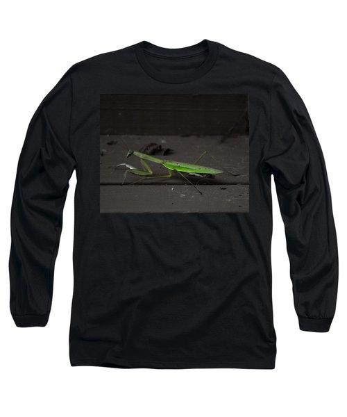 Praying Mantis 2 Long Sleeve T-Shirt
