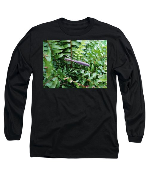 Praying Mantis Long Sleeve T-Shirt