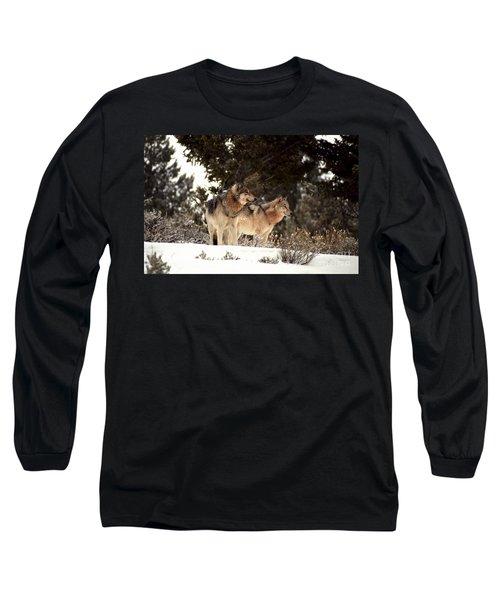 Predators Long Sleeve T-Shirt by Sharon Elliott