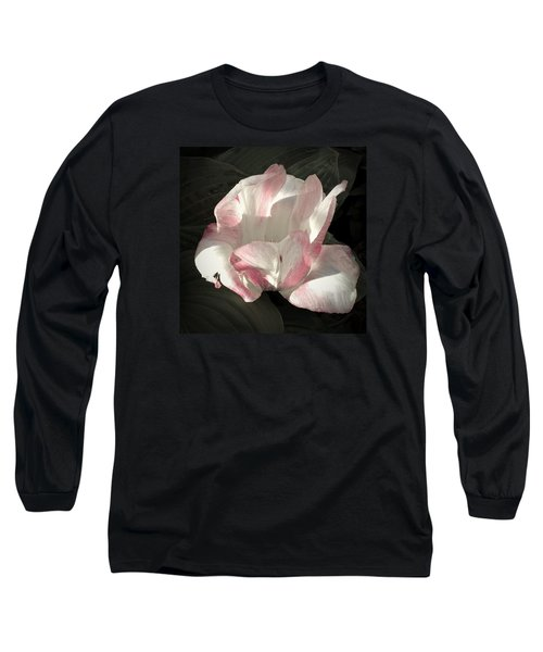 Pretty In Pink Long Sleeve T-Shirt by Photographic Arts And Design Studio