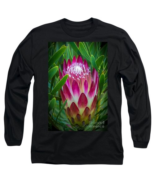 Protea In Pink Long Sleeve T-Shirt by Kate Brown
