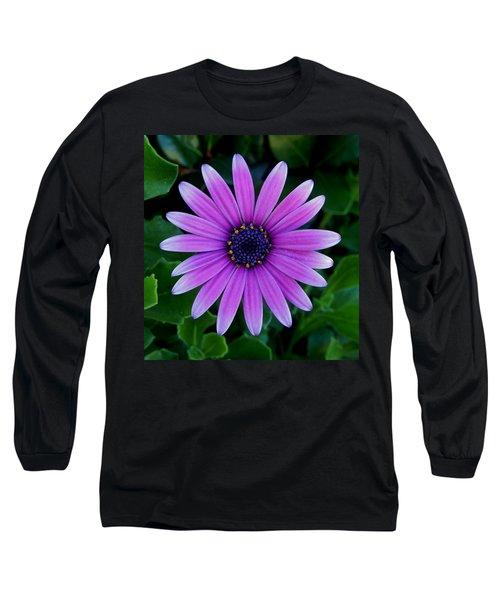 Purple Flower Long Sleeve T-Shirt by Pamela Walton