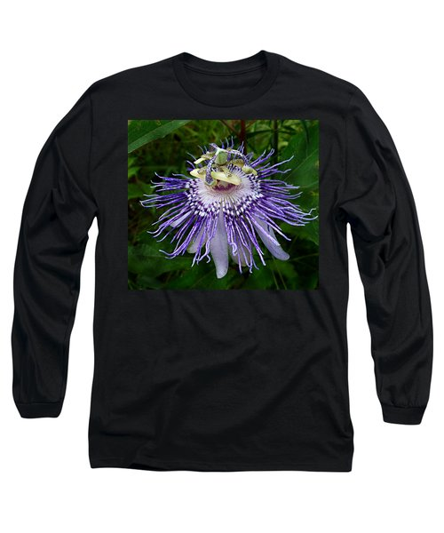 Purple Passionflower Long Sleeve T-Shirt