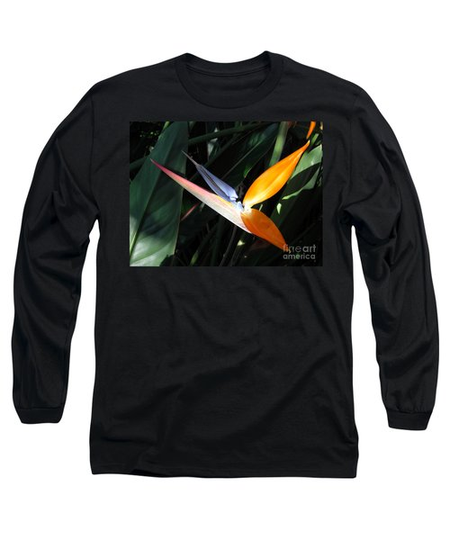 Ray Of Light Long Sleeve T-Shirt by David Lawson