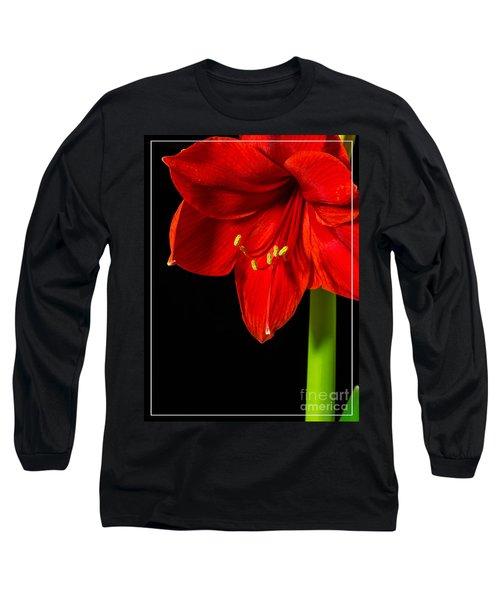 Red Amaryllis Flower Long Sleeve T-Shirt