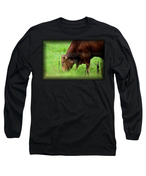 Red Brangus Bull Long Sleeve T-Shirt by Maria Urso