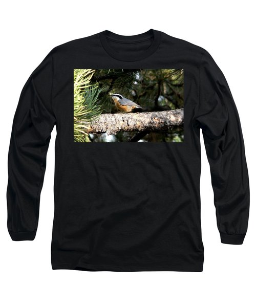 Red-breasted Nuthatch In Pine Tree Long Sleeve T-Shirt