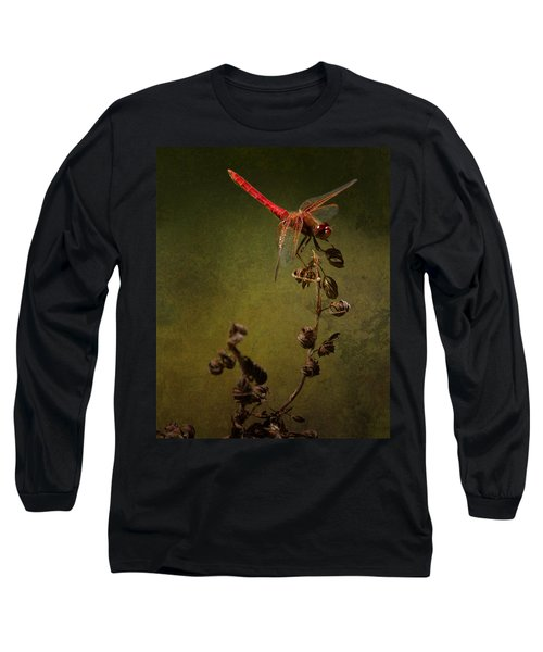 Red Dragonfly On A Dead Plant Long Sleeve T-Shirt by Belinda Greb