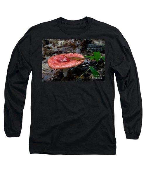 Red Eft On A Mushroom Long Sleeve T-Shirt