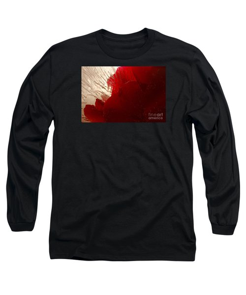 Red Ice Long Sleeve T-Shirt by Randi Grace Nilsberg