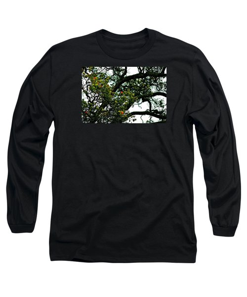 Red Ohia Lehua Tree Long Sleeve T-Shirt