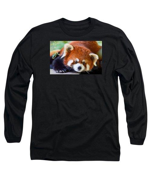 Red Panda Long Sleeve T-Shirt by Michael Hubley