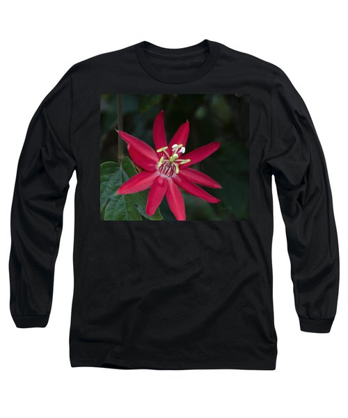 Red Passion Flower Long Sleeve T-Shirt