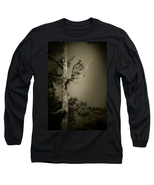 Red Tail Hawk On Loop Road Long Sleeve T-Shirt by Bradley R Youngberg