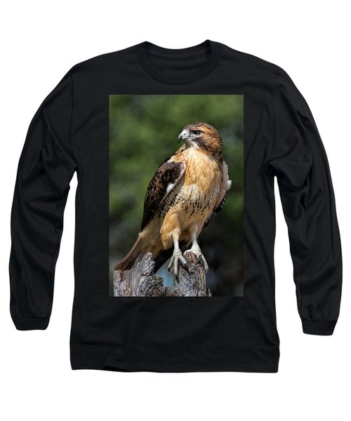 Red Tail Hawk Portrait Long Sleeve T-Shirt