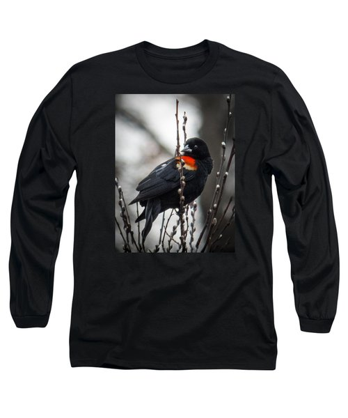 Red Winged Blackbird In Pussy Willows Long Sleeve T-Shirt by Patti Deters