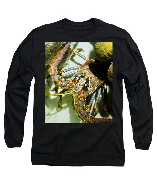 Reef Lobster Close Up Spotlight Long Sleeve T-Shirt by Amy McDaniel