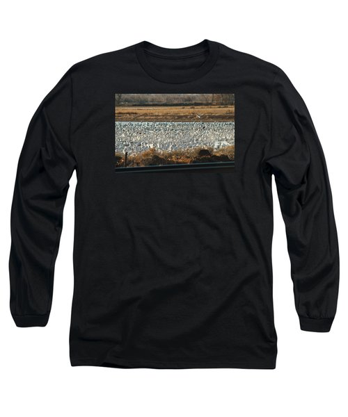 Refuge View 3 Long Sleeve T-Shirt by James Gay