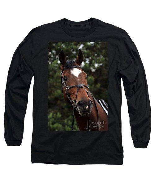 Regal Horse Long Sleeve T-Shirt