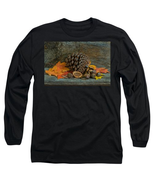 Remnants Of Fall Long Sleeve T-Shirt