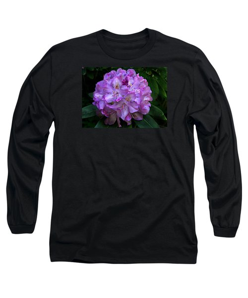 Rhododendron ' Roseum Elegans '  Long Sleeve T-Shirt by William Tanneberger
