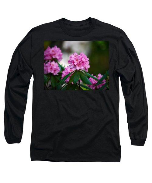 Rhododendron Long Sleeve T-Shirt by Jouko Lehto