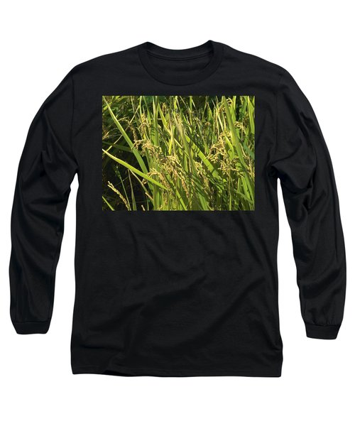 Rice Long Sleeve T-Shirt by Rachel Mirror