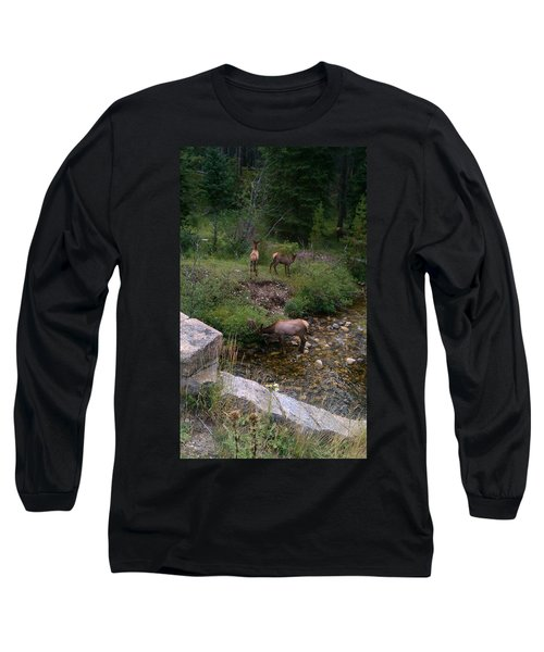 Roadside Luncheon Long Sleeve T-Shirt