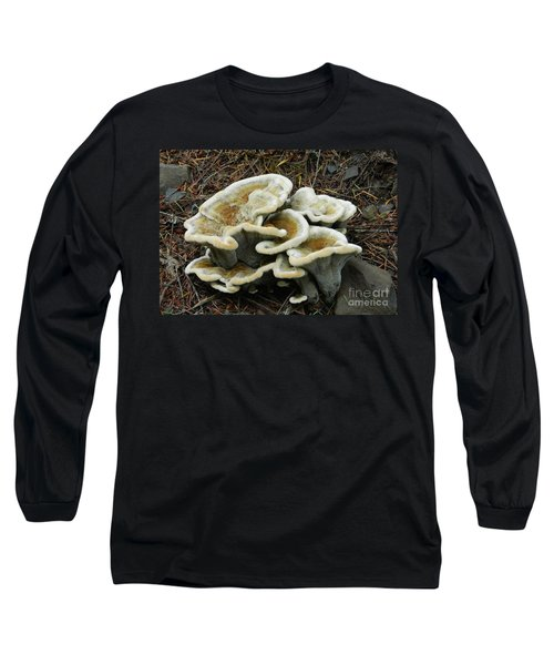 Long Sleeve T-Shirt featuring the photograph Roadside Treasure by Chalet Roome-Rigdon