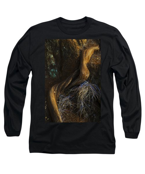 Tree Root Long Sleeve T-Shirt