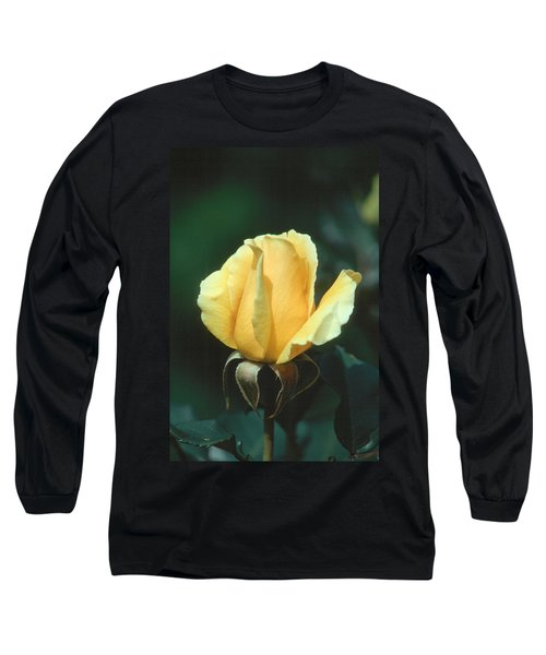 Rose 2 Long Sleeve T-Shirt by Andy Shomock