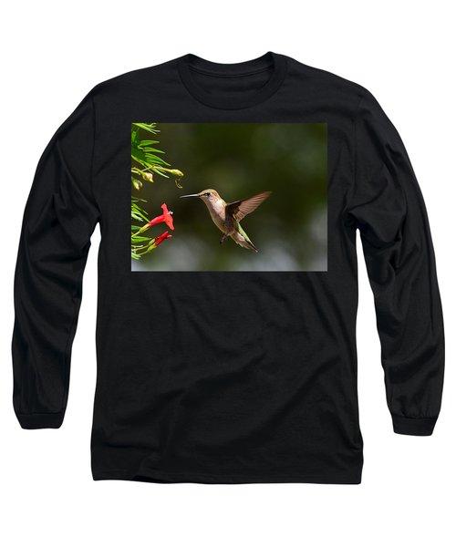 Ruby Throat Hummingbird Long Sleeve T-Shirt by Kathy Eickenberg