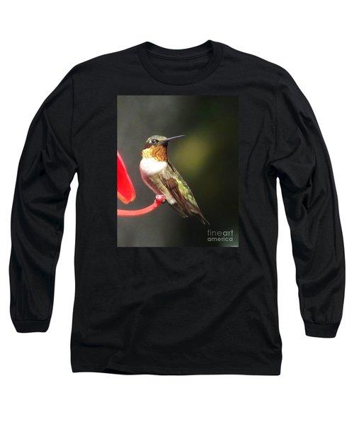 Ruby Throated Hummingbird 2 Long Sleeve T-Shirt